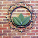 sage lotus on brick